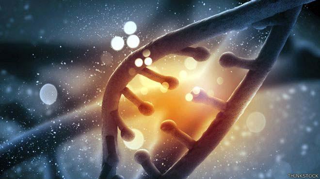Extraña alteración genética determina que existen los súper héroes