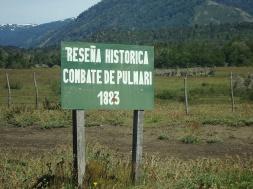 1280px-Combate_pulmari