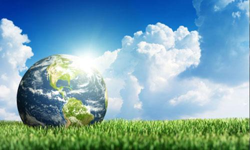 La Ciudad y el cuidado del medio ambiente