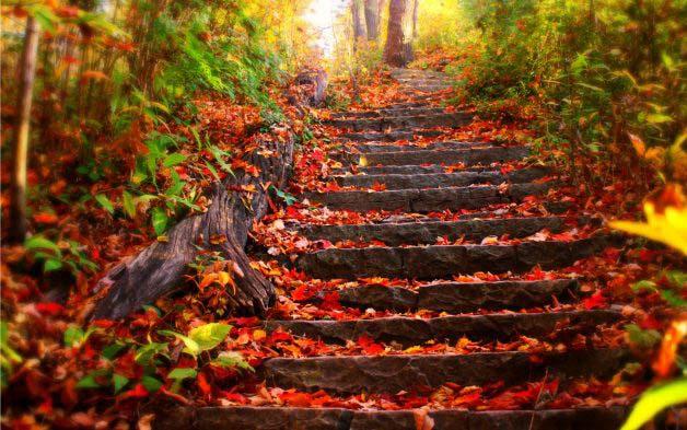 Llegó el otoño, el frío comienza a macar tendencia