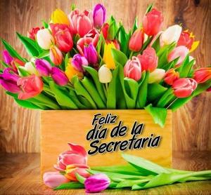 dia-de-la-secretaria_007