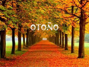 otoo-para-nios-1-638