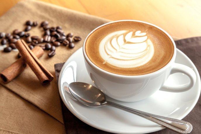 Café, derribando el mito de lo perjudicial