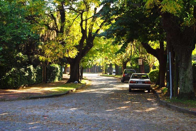 Barrio Parque  : el rincón porteño de los famosos