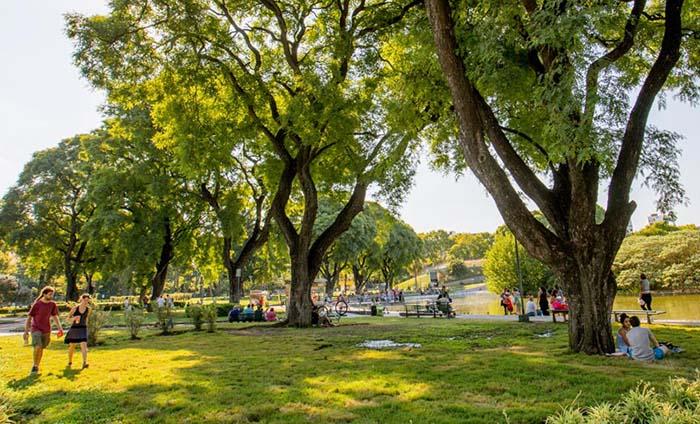 Parque Centenario: el centro de las propuestas culturales