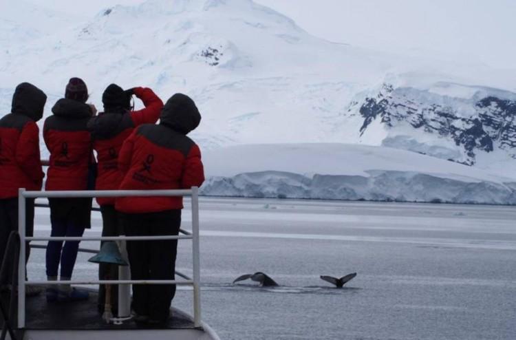 Una argentina en la Antártida