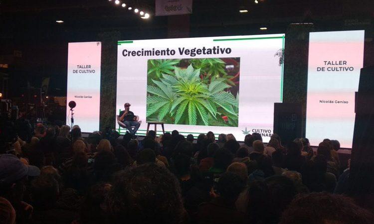 La Rural: Expo Cannabis y el uso medicinal del aceite